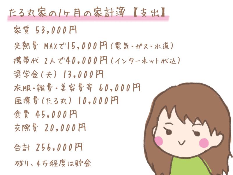 たる丸家の家計簿(支出)